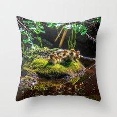 Mallard ducklings on a stone Throw Pillow
