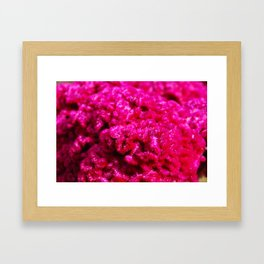 P'zazz Framed Art Print