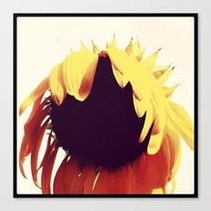 FLOWER 011 Canvas Print