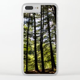 Stand of Trees Clear iPhone Case