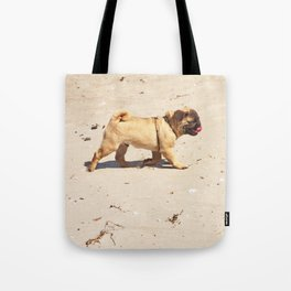 small dog pug baby playing in the summer at the beach Tote Bag