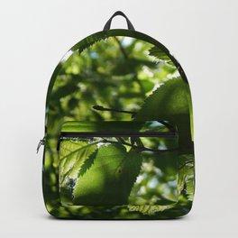 Sunlight Canopy Backpack