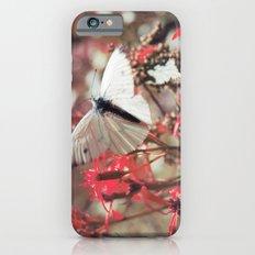 Karkonosze National Park Slim Case iPhone 6s