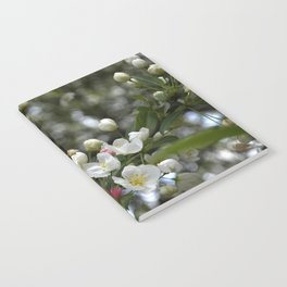 Red Buds and White Blossoms Notebook