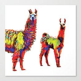 Electric Llamas Canvas Print