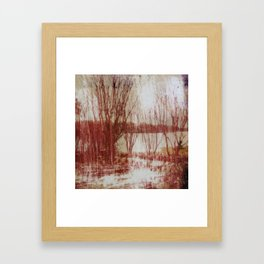 Area 16 Framed Art Print