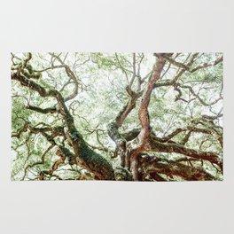 Angel Oak Tree Rug