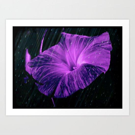 Purple Striped Glory Art Print