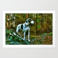 the hound Art Prints featuring Hound by Doug McRae