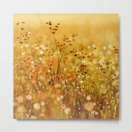 meadowflowers Metal Print