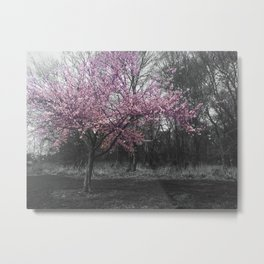 Sundays are for flowers Metal Print