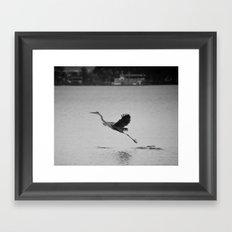 Blue Heron on Canandaigua Lake 2013 Framed Art Print