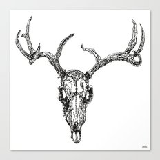 D is for Deerskull Canvas Print