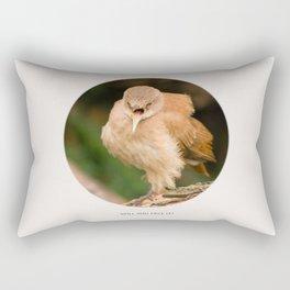 Will you face it? - angry bird - Furnarius rufus Rectangular Pillow