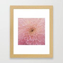 Perfect Petals Framed Art Print