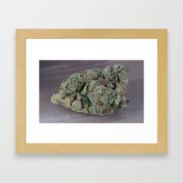 Dr. Who Medicinal Medical Marijuana Framed Art Print