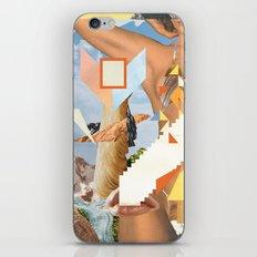 CAT / CRUSH / GIRL iPhone & iPod Skin