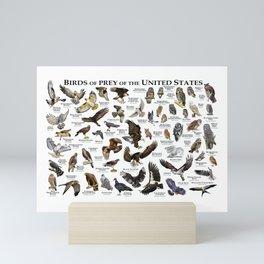 Birds of Prey of the United States Mini Art Print