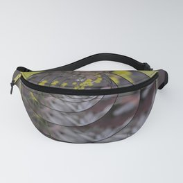 Wattle in the Round Fanny Pack