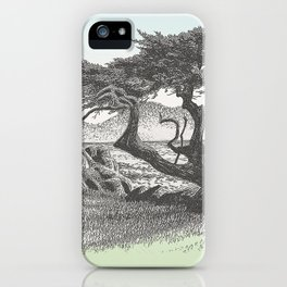 MONTEREY CYPRESS AND POINT LOBOS CALIFORNIA VINTAGE PEN DRAWING iPhone Case