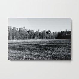 An Acre Metal Print