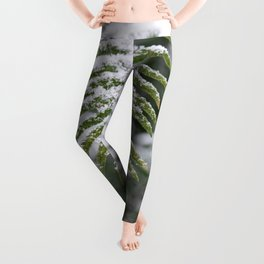 Fern Forest Winter Pacific Northwest Snow II - Nature Photography Leggings