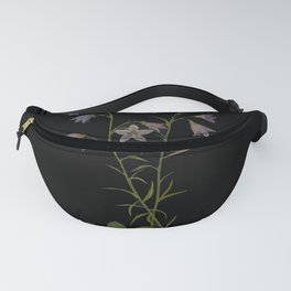 Campanula Rotundifolia Mary Delany Delicate Paper Flower Collage Black Background Floral Botanical Fanny Pack