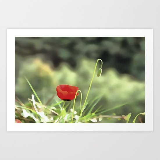 One Poppy Art Print