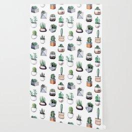Cactus Pattern 09 Wallpaper