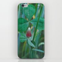 clover iPhone & iPod Skins featuring Clover by Christine baessler
