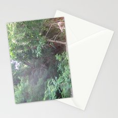 Jungle Summer in Virginia Stationery Cards