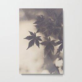 Leaves' Silhouette  Metal Print