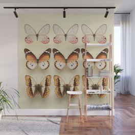 Butterfly Collection Wall Mural