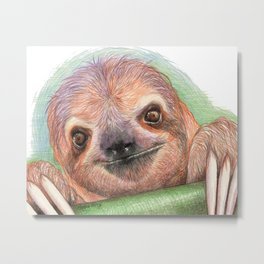 The Smiling Sloth Metal Print