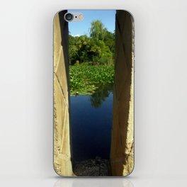 Framing a Pond iPhone Skin