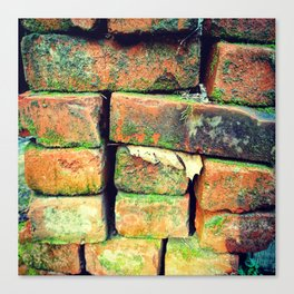 Green Stack Canvas Print