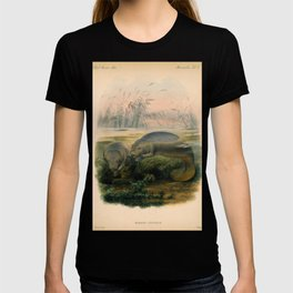 Vintage Scientific illustration, c. 1880 (Manatees) T-shirt