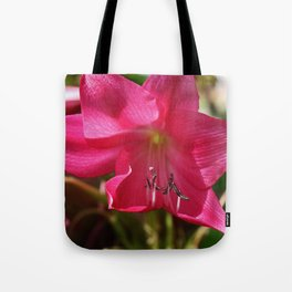 Lingering Love Tote Bag