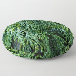 Pacific Redcedar Floor Pillow