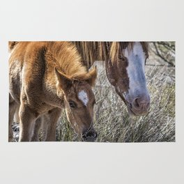 Wild Foal with Dad Rug