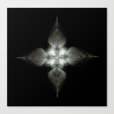 Four Feathers Canvas Print