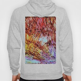woods in the fall Hoody