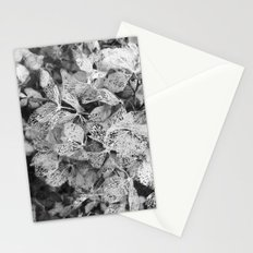 Winter Hydrangea in Black and White Stationery Cards