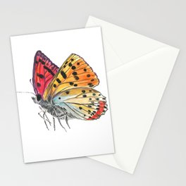 Butterfly Orange Red Purple Stationery Cards