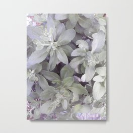 Autumn Joy Sedum Metal Print