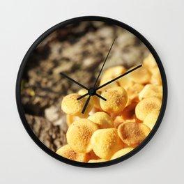 Pretty Little Mushrooms Wall Clock