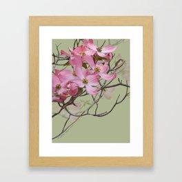 PINK FLOWERING DOGWOOD Framed Art Print
