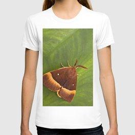 "Colorful moth ""Lasiocampa quercus"" T-shirt"
