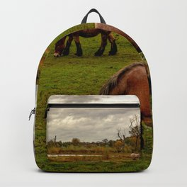 Four horses grazing the meadow Backpack