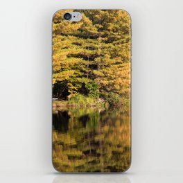 Fall in the Adirondacks, upstate NY iPhone Skin